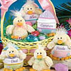 Personalized Baby Chick with Zippered Egg