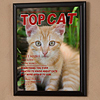 Top Cat Magazine Cover