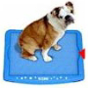 Indoor Potty Mat